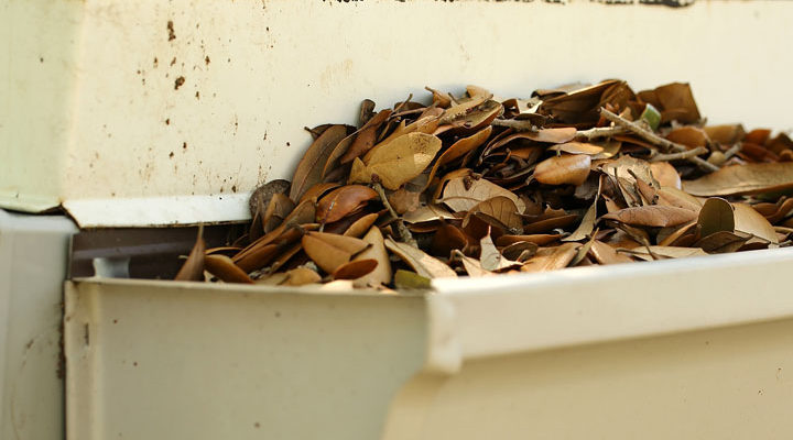 Why it's Important to Keep Your Gutters Clean