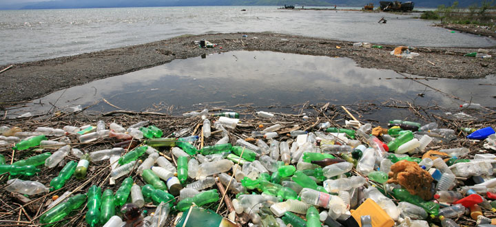 End Plastic Pollution for Earth Day 2019