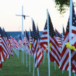 USA flags - memorial day