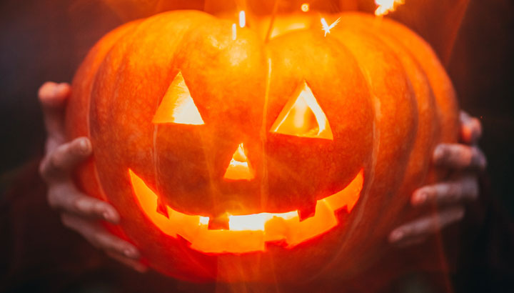 No Tricks – Treat Yourself with E-Z Window Cleaning Services!