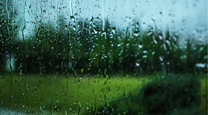 Cleaning Your Windows Before or After the Rain