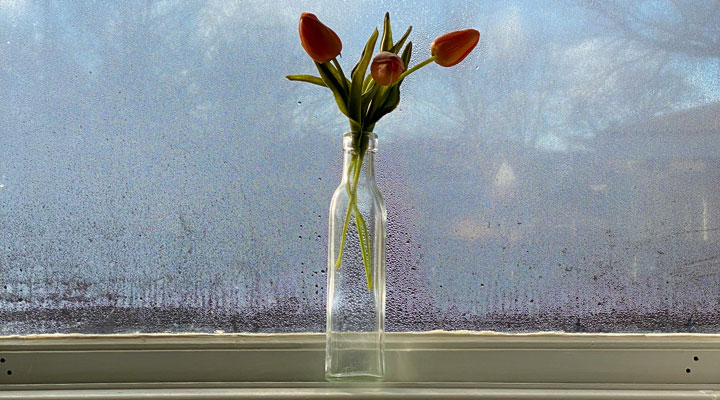 Cleaning Your Windows Makes Them Last Longer